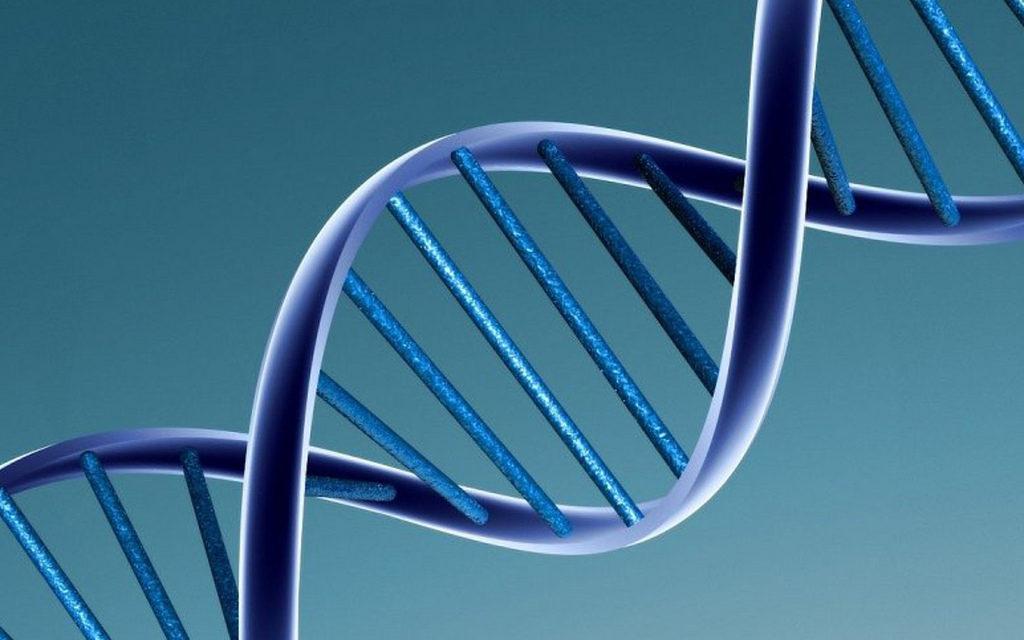 Nutrigenetica e Dieta